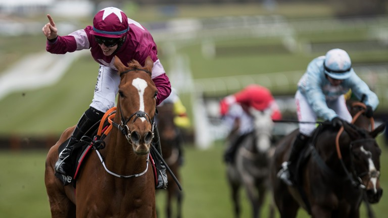 Number one: Samcro is Punchestown bound along with a number of Elliott-trained stars that are owned by Gigginstown House Stud