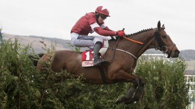 Tiger Roll and Keith Donoghue clear the last to win the Glenfarcas Cross Country Chase