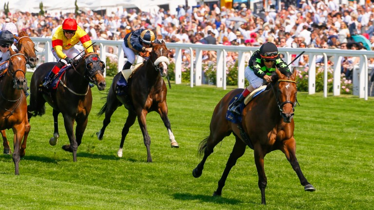 Lady Aurelia: the mare will try and complete a Royal Ascot hat-trick next month