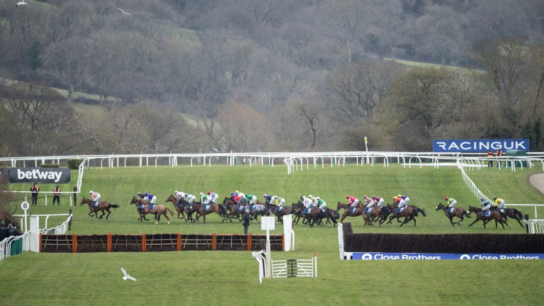 Cheltenham: the action switches to the New course this afternoon