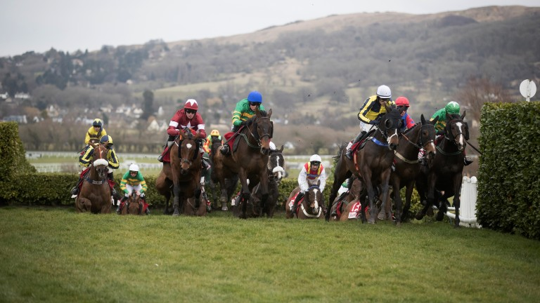 Unique race: runners in the Glenfarclas Chase, won by Tiger Roll and Keith Donoghue, make their way around the cross-country course