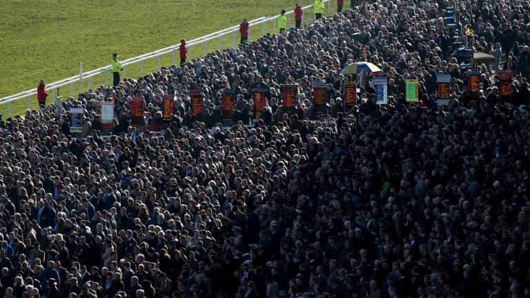 The Cheltenham betting ring where punters have had the upper hand so far