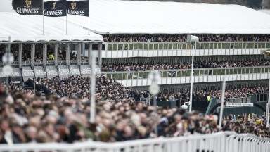 Standing room only at the Cheltenham Festival