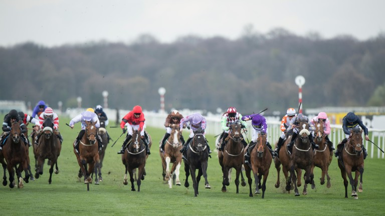 Doncaster: stage the Lincoln handicap on Saturday