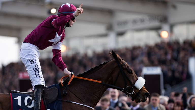 Shattered Love: granted her sire, the four-time Ascot Gold Cup hero Yeats, with a first festival winner