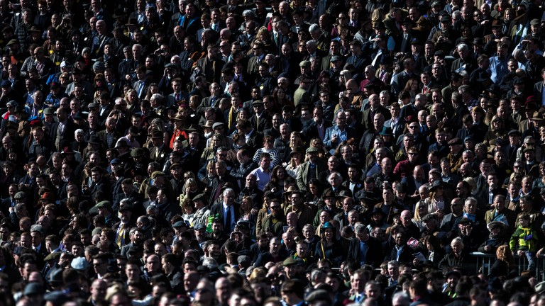 Looking on: racegoers in the sun follow the action on the track
