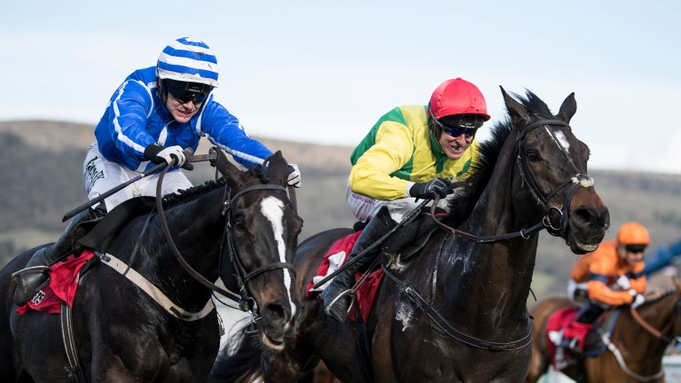 Penhill (left): ready to return in the Hatton's Grace at Fairyhouse on December 1