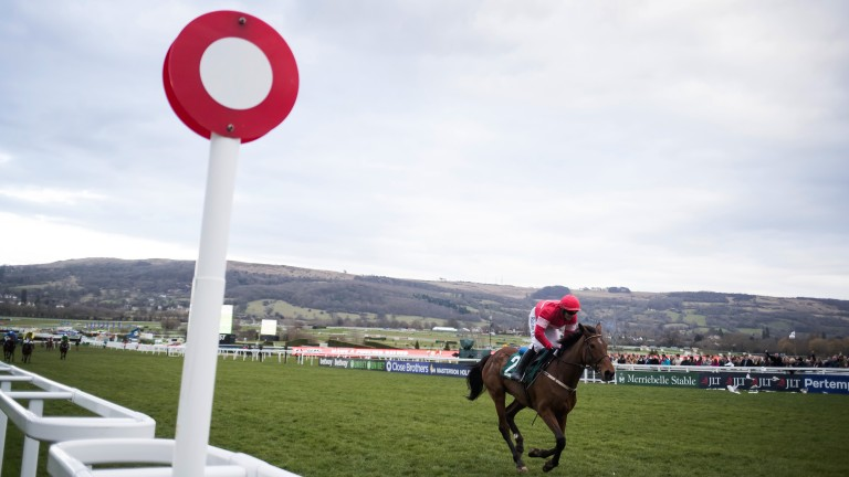 Sheer isolation: Laurina cruises to victory under Paul Townend in the Trull House Stud Mares' Novices' Hurdle