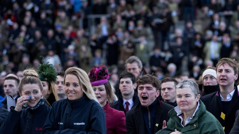 Roaring them home: Ryan Hatch (third right) cheers on Splash Of Ginge, who finished second to The Storyteller in the Brown Advisory and Merriebelle Stable Plate Handicap Chase