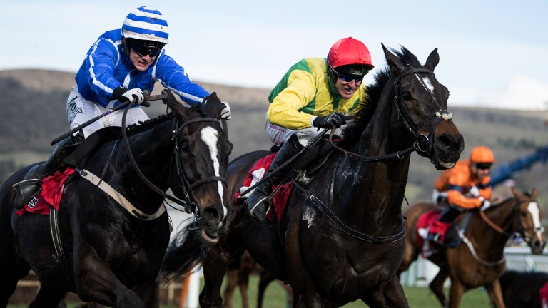 Penhill: the Stayers' Hurdle winner will try and follow up in the Punchestown feature