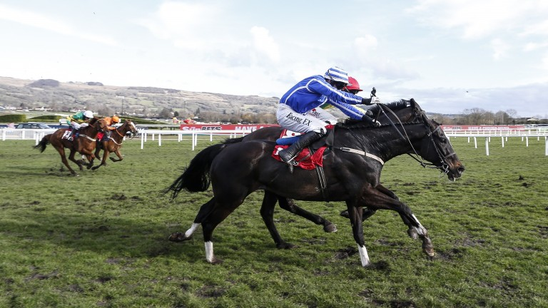 Penhill (blue) finishes well to win the Stayers' Hurdle at Cheltenham