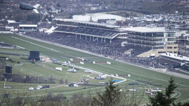 Hive of activity: the view of the racecourse from Cleeve Hill