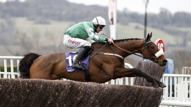 Presenting Percy, another Irish favourite, performs perfectly for Davy Russell in the RSA Novices' Chase