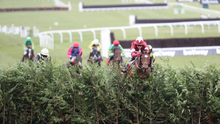 Tiger Roll: excels over the Cross Country fences