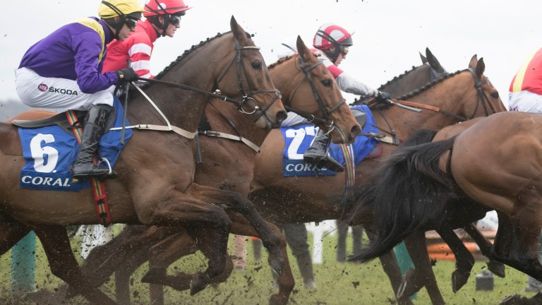 Coral Cup winners Bleu Berry and Mark Walsh (yellow cap) in the thick of the action