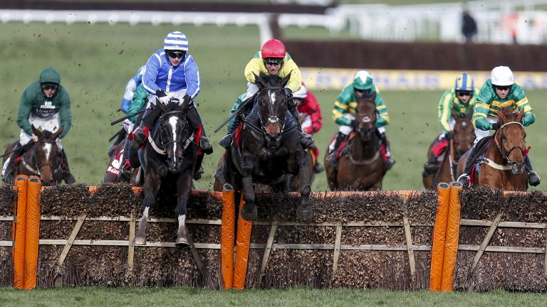 Penhill (blue silks) just leads Supasundae over the final flight in the Stayers' Hurdle