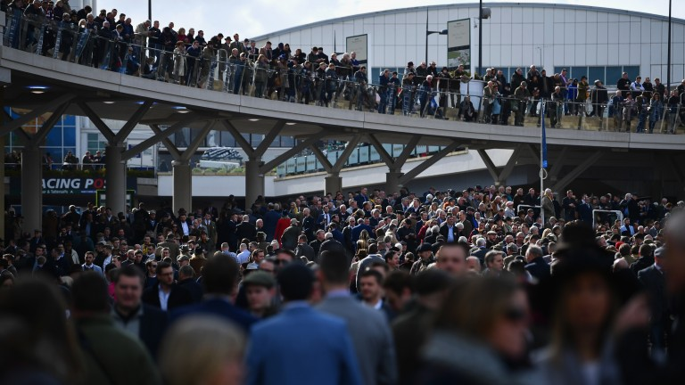Cheltenham Festival: prospect of another 17mm of rain in the lead-up to the festival