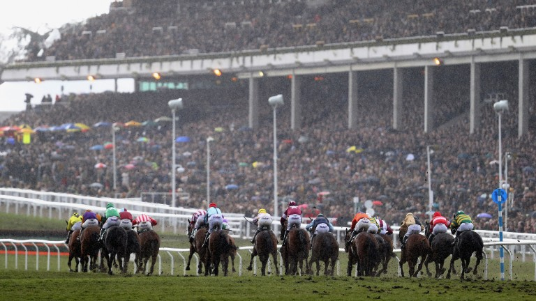 They're off: runners and riders in the County Hurdle pass the starter as the huge crowd looks on