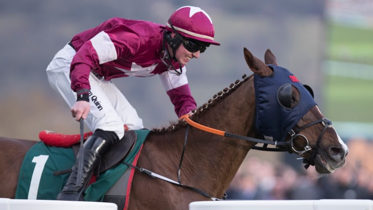 Blow By Blow in winning form at the Cheltenham Festival last year