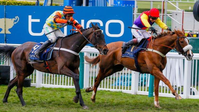 Native River leads home Might Bite in the Gold Cup