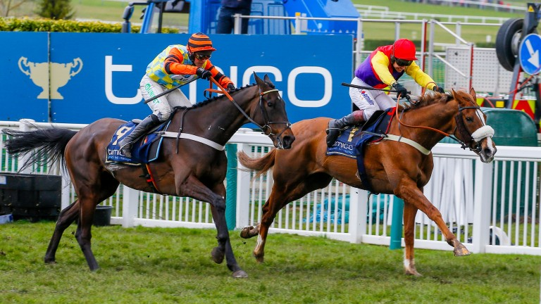 Just how much did the Gold Cup take out of Betway Bowl favourite Might Bite?