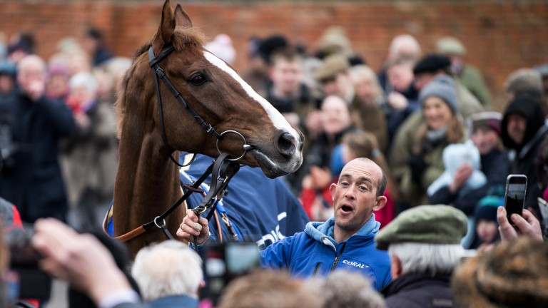 Stable star: Cheltenham Gold Cup hero Native River with travelling head man Richard Young