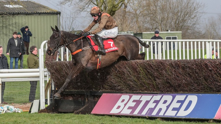 Sean Houlihan elicits another fine leap from Regal Flow as the 11-year-old gallops to victory in the Midlands National
