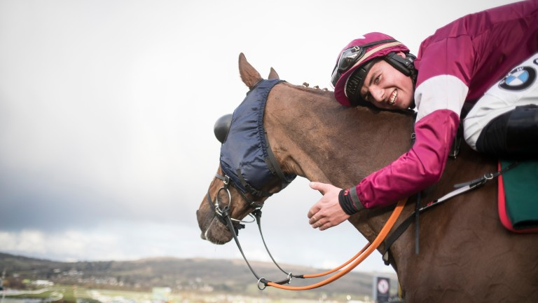 Donagh Meyler thanks his mount Blow By Blow after their Martin Pipe Handicap Hurdle win – a seventh of the festival for Gigginstown