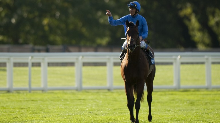 Poet's Voice after winning the Queen Elizabeth II Stakes