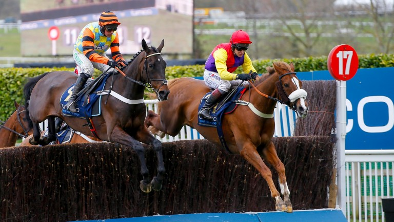 Might Bite (left) giving his all against Native River in the Cheltenham Gold Cup