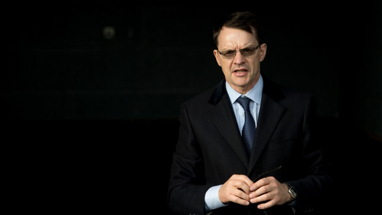 Aidan O'Brien: strong hand in the opening maiden at the Curragh