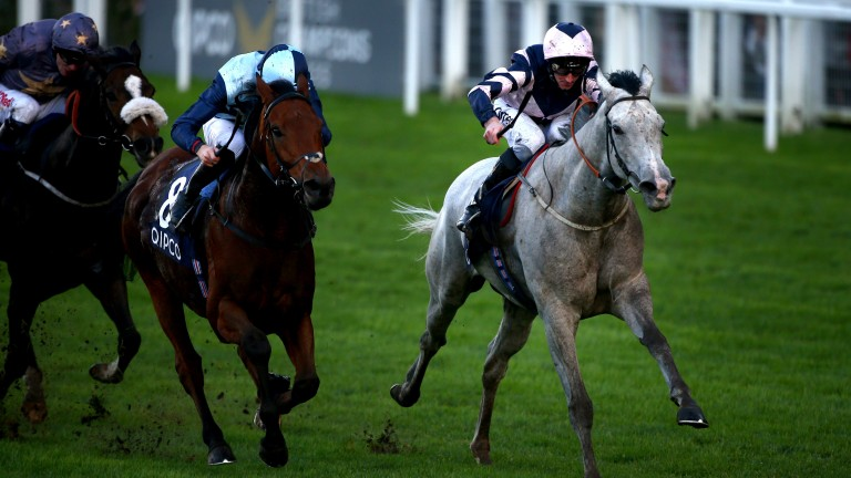 Lord Glitters (right) wins at Ascot last October (Photo by Charlie Crowhurst/Getty Images)