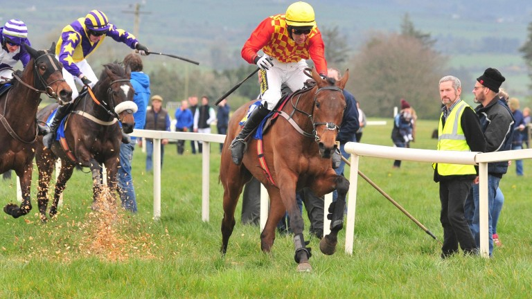 Newbury finalist: Jet Set winning her point-to-point under Richard Harding in Ireland last April