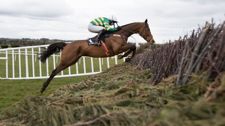 Flying leap: Great Field measures a fence in perfect style on his way to an impressive victory