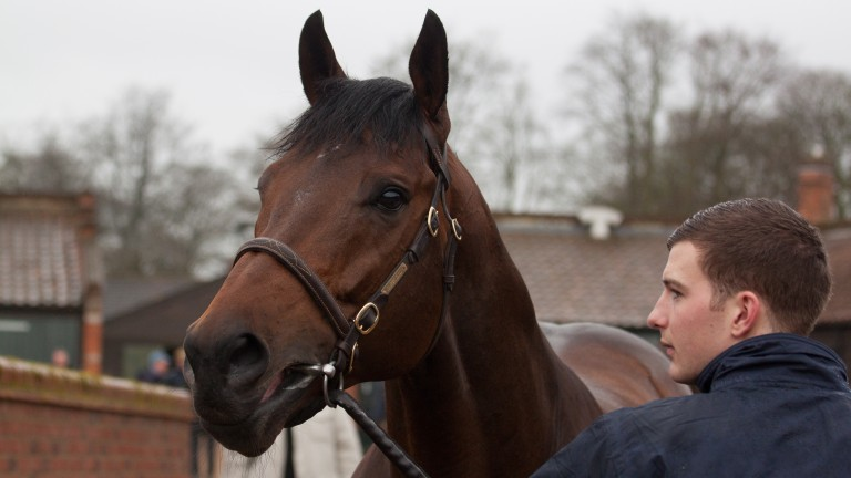 Garswood: already off the mark with three winners in Britain and Ireland