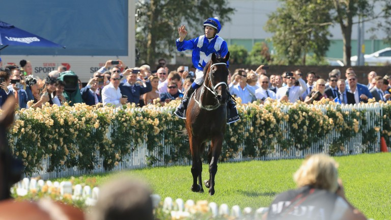 Winx receives the adulation of the crowd after winning the Group 1 George Ryder Stakes at Rosehill
