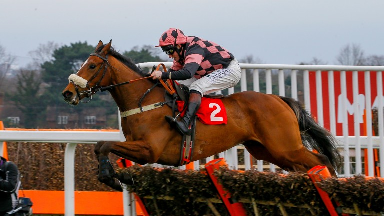 Eragon De Chanay: finished seventh in the Fred Winter at Cheltenham