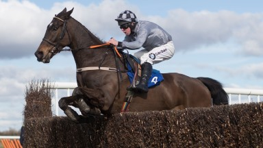 Castlegrace Paddy and Andrew Lynch jump to victory in the feature at Thurles