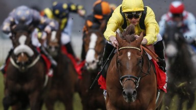 The only one in focus: Addeybb is out on his own with James Doyle in the 32Red Lincoln at Doncaster on Saturday
