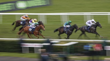 DONCASTER, ENGLAND - MARCH 24: Charles Bishop riding Izzer (R) win The Unibet Brocklesby Conditions Stakes at Doncaster racecourse on March 24, 2018 in Doncaster, England. (Photo by Alan Crowhurst/Getty Images)