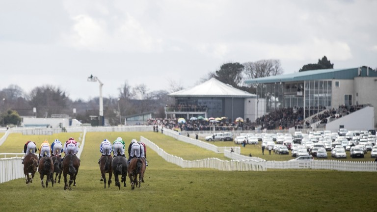 Naas: track's card featuring Alleged and Gladness Stakes was abandoned on Friday morning