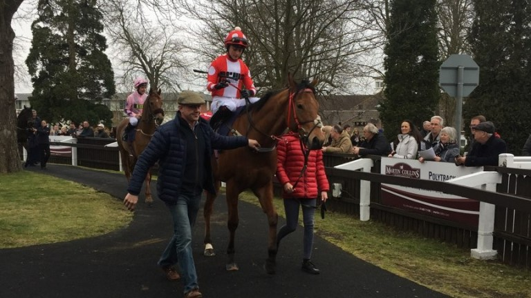 Spare Parts (Nicola Currie) being led out to the track by Phil McEntee at Lingfield on Saturday