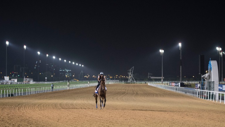 Victory for West Coast in Saturday's Dubai World Cup would give trainer Bob Baffert a fourth triumph in the race