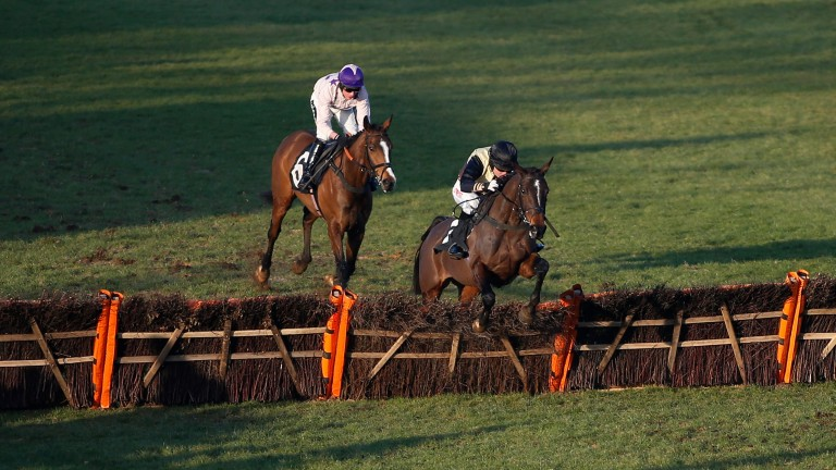 Noel Fehily and Act Now clear the last to win a handicap hurdle at Plumpton last year