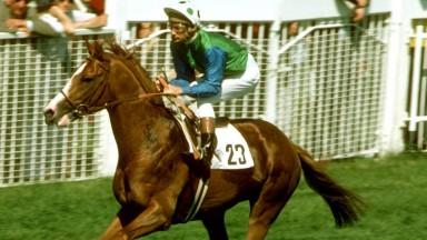 Lester Piggott and The Minstrel on Derby day 1977: the colt won under a machine-gun ride