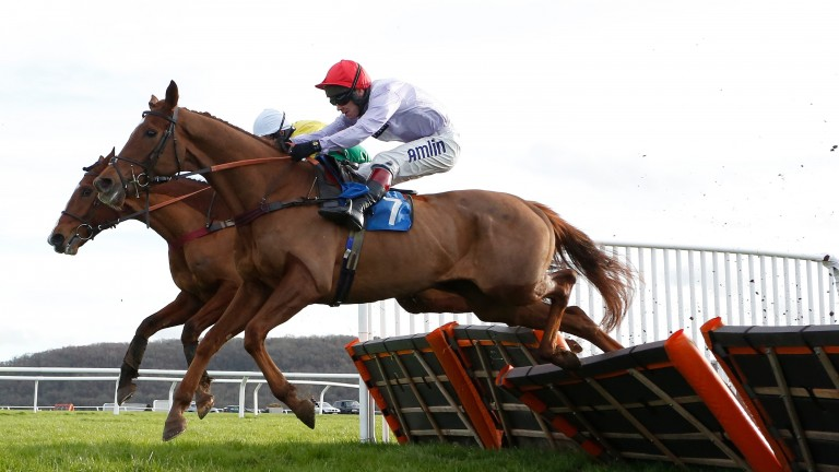 Rolling Dylan (nearside): can defy topweight at Hereford