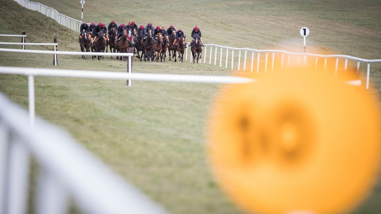 Full force: the Ballydoyle battalion makes its way down the course