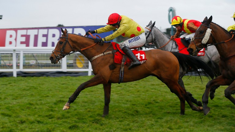 Invicta Lake: won a Grade 3 handicap hurdle at Sandown in 2015