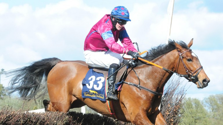 Treasure Dillon en route to success in the four-year-old maiden at Durrow on Saturday