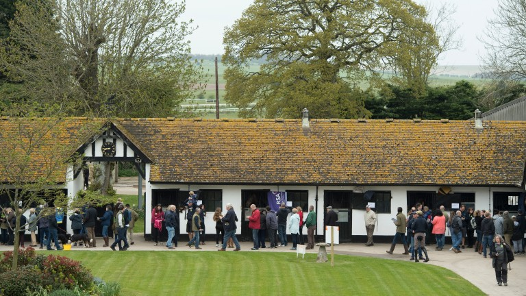 Visitors pour through the gates at Nicky Henderson's Seven Barrows stables 12 months ago